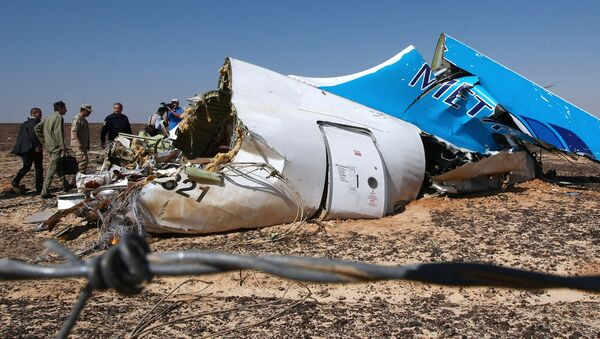 The wreckage of Kogalymavia's Airbus A321 passenger airliner - Sputnik International