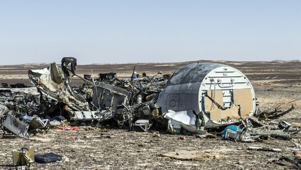 Debris belonging to the A321 Russian airliner are seen at the site of the crash in Wadi el-Zolmat, a mountainous area in Egypt's Sinai Peninsula on November 1, 2015. International investigators began probing why a Russian airliner carrying 224 people crashed in Egypt's Sinai Peninsula, killing everyone on board, as rescue workers widened their search for missing victims. - Sputnik International