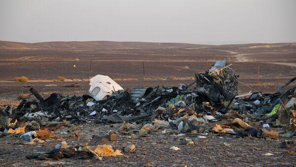 The wreckage of the Kogalymavia Airlines plane that crashed 100 km from Al-Arish on the Sinai Peninsula - Sputnik International