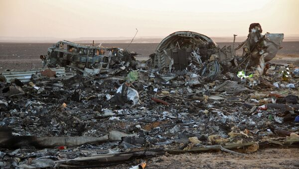 Fragments of a Kogalymavia Airbus A321 passenger airliner / Flight 9268 that crashed en route from Sharm El Sheikh to St. Petersburg in Egypt's North Sinai Governorate - Sputnik International