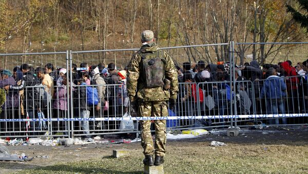 A Slovenian soldier observes migrants as they wait to cross the border into Spielfeld in Austria from the village of Sentilj, Slovenia, October 31, 2015 - Sputnik International