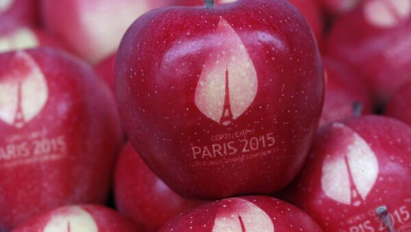Apples marked with the logo of the World Climate Change Conference 2015 (COP21) are seen in this illustration picture at the Laquenexy Fruit Gardens, near Metz, eastern France, November 3, 2015 - Sputnik International