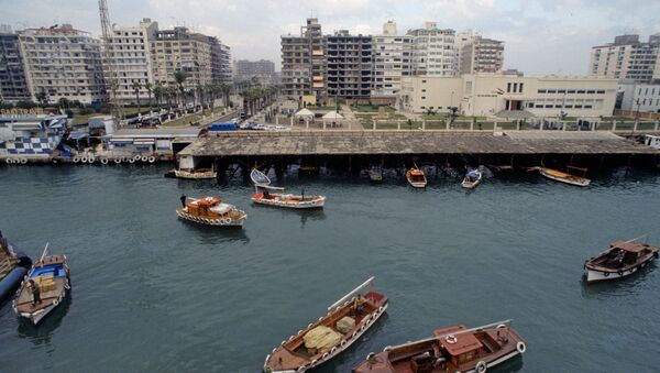 Port Said. View at Suez Canal - Sputnik International