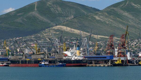 View at the cargo port of Novorossiysk. - Sputnik International