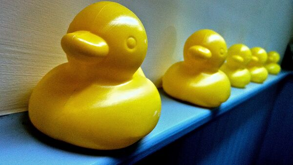 Plastic Yellow Ducks - Sputnik International