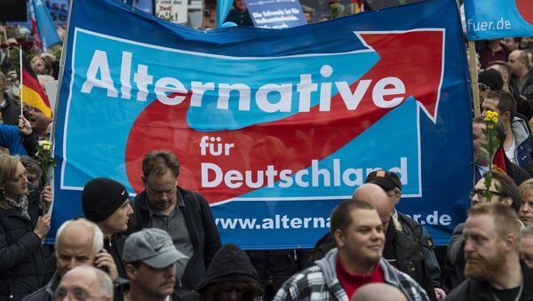 Supporters of the right-wing populist Alternative for Germany (AfD) party display an AfD banner during a demonstration by AfD supporters in Berlin on November 7, 2015 - Sputnik International