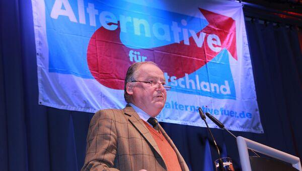 Alexander Gauland - Sputnik International