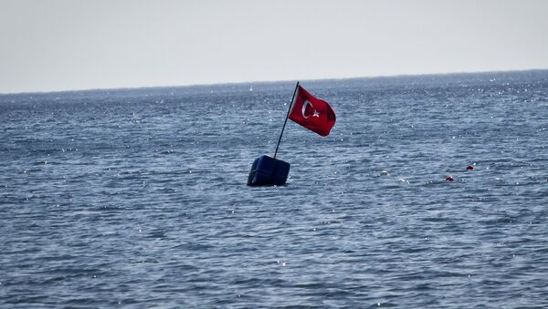 Turkey flag - Sputnik International