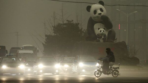 A resident rides an electric bicycleacross a street amid heavy smog as vehicles wait for a traffic light next to a statue of pandas, a landmark of the Wangjing area in Beijing, China, December 1, 2015 - Sputnik International