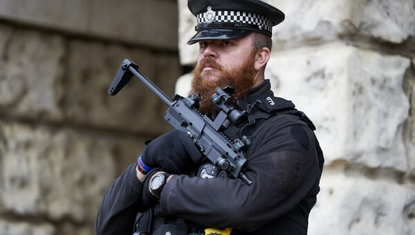 Armed British police officers stand on duty in central London on November 25, 2015 - Sputnik International