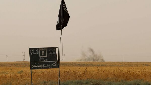 Smoke rises in the distance behind an Islamic State (IS) group flag and banner - Sputnik International