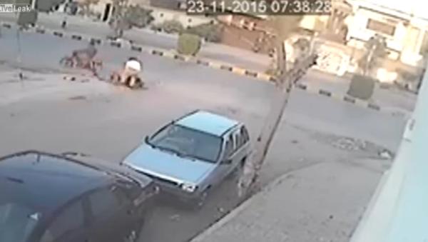 Car mirror thief gets instant justice - Sputnik International