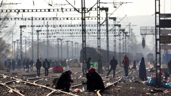 Migrants and refugees wait to cross the Greek-Macedonian border near Idomeni on December 7, 2015 - Sputnik International