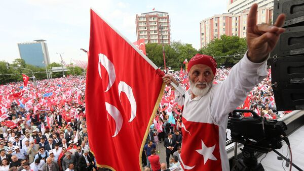 Turkish nationalist organization Gray wolves , wave their flags during a rally by Turkey's opposition Nationalist Action Party, MHP in Ankara, Turkey, May 24, 2015 - Sputnik International