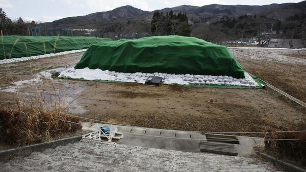 Piles of radiation-contaminated waste sit in a field in the abandoned town of Namie, outside the exclusion zone surrounding the Fukushima Dai-ichi nuclear plant in Japan (File) - Sputnik International