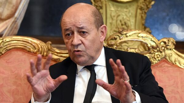 French Defence Minister Jean-Yves Le Drian - Sputnik International