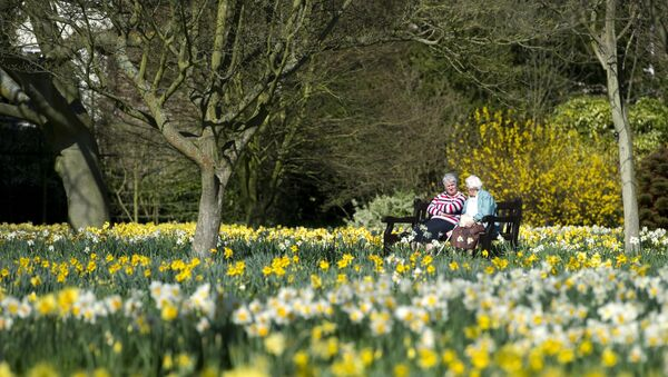 Two women chat on a bench in the Wilderness garden at the Hampton Court Palace in East Molesey, south west London - Sputnik International