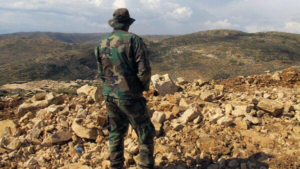 Hezbollah fighter looks toward Syria while standing in the fields of the Lebanese border village of Brital, Lebanon. (File) - Sputnik International
