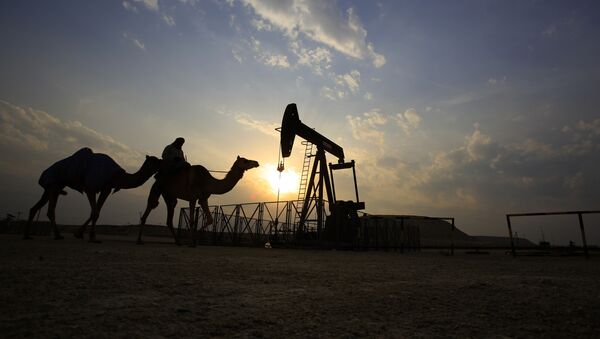 A man rides a camel through the desert oil field and winter camping area of Sakhir, Bahrain, Sunday, Dec. 20, 2015 - Sputnik International