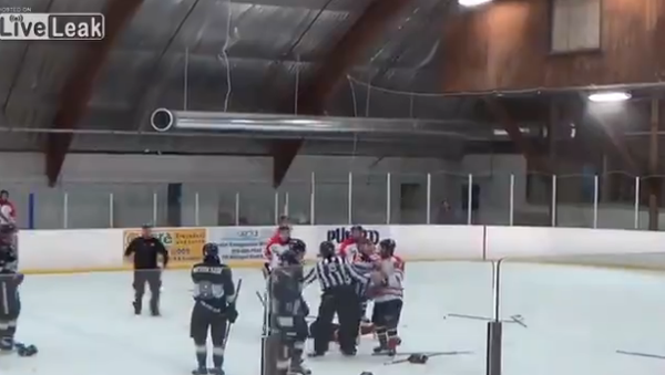 Hockey ref punches player then gets tackled by coach - Sputnik International