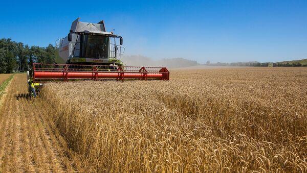 (FILES) This picture taken on July 23, 2013 in the Khmelnytskyi region displays a harvester in a field - Sputnik International