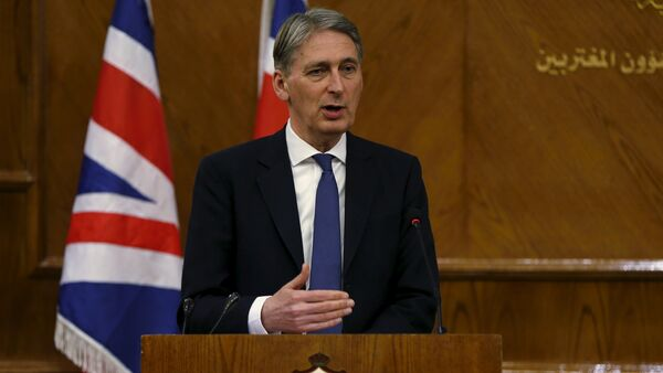 Britain's Foreign Secretary Philip Hammond speaks during a joint news conference with Jordan's Foreign Minister Nasser Judeh at the Foreign Ministry in Amman, Jordan, February 1, 2016 - Sputnik International