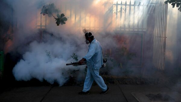 A health ministry worker fumigates a house to kill mosquitoes during a campaign against dengue and chikungunya and to prevent the entry of Zika virus in Managua, Nicaragua - Sputnik International