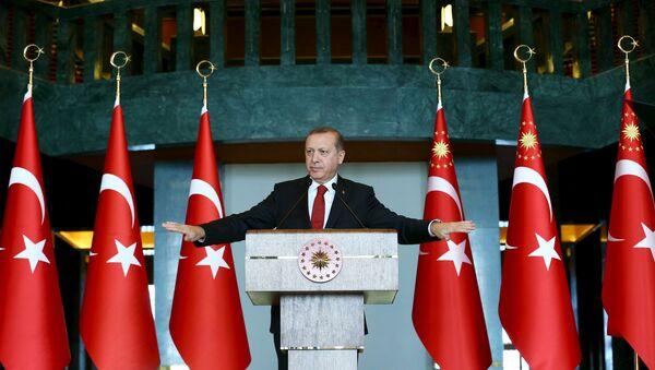 Turkey's President Tayyip Erdogan addresses the audience during a meeting in Ankara, January 12, 2016. - Sputnik International