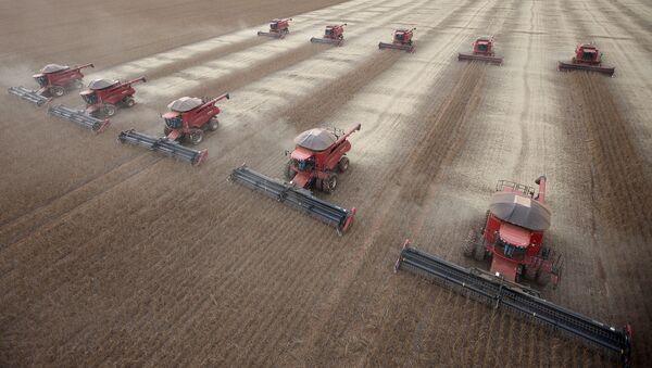 Workers use combines to harvest soybeans in Tangara da Serra, State of Mato Grosso, Brazil - Sputnik International