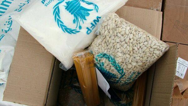 Russia delivered humanitarian aid to Syrian Kessab, Latakia Province - Sputnik International