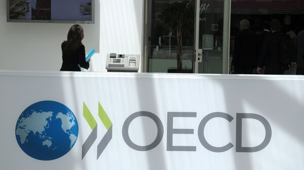 A participant stands at the OECD headquarters in Paris during the presentation of the Economic Outlook at the 2013 OECD Week on May 29, 2013 - Sputnik International
