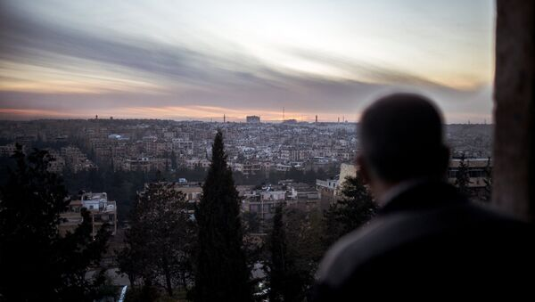A view of the city of Aleppo - Sputnik International