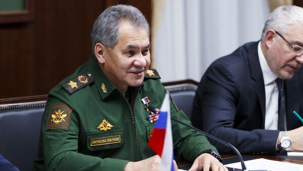 Russian Defense Minister Sergei Shoigu and Iranian Defense Minister Hossein Dehghan meet in Moscow - Sputnik International