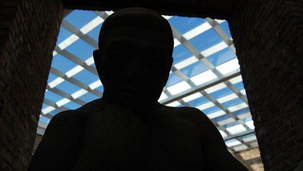 A man's silhouette - Sputnik International