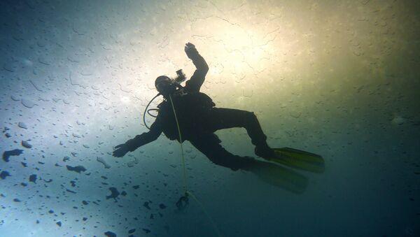 Diver - Sputnik International