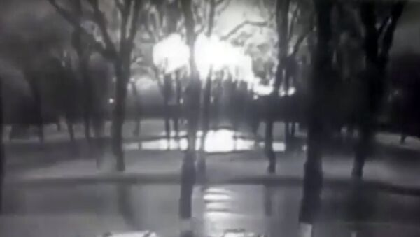 This frame grab provided by Rostov-on-Don I General company from black and white CCTV footage shows road and behind line of trees fireball, believed to be a plane on fire, crashes to ground at the Rostov-on-Don airport, about 950 kilometers (600 miles) south of Moscow, Russia Saturday, March 19, 2016. - Sputnik International