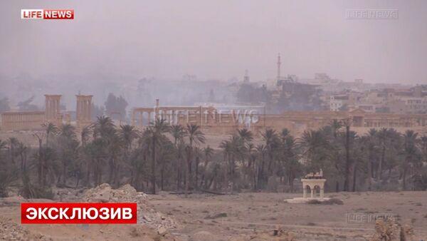 Views of Syria' liberated Palmyra - Sputnik International