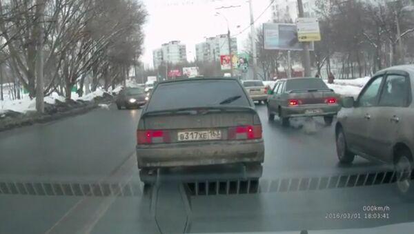 Dog Accident on Road In Russia - Sputnik International
