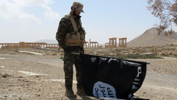 A Syrian Army soldier carries a Daesh flag as he stands on a street in the ancient city of Palmyra on March 27, 2016 - Sputnik International