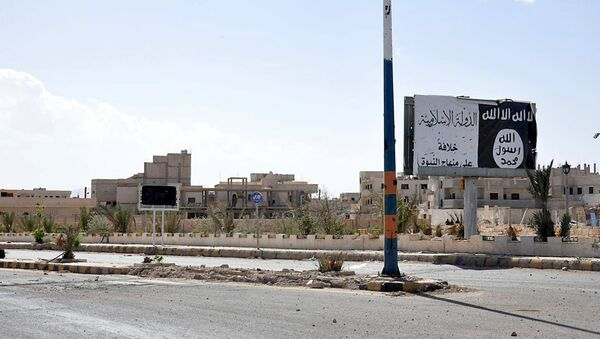 A billboard (R) belonging to the Islamic State fighters erected along a road, is pictured after forces loyal to Syria's President Bashar al-Assad recaptured Palmyra city, in Homs Governorate in this handout picture provided by SANA on March 27, 2016 - Sputnik International