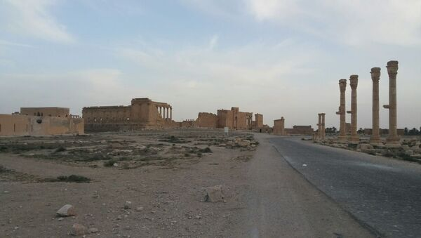 Syrian Army restores Palmyra's airport - Sputnik International