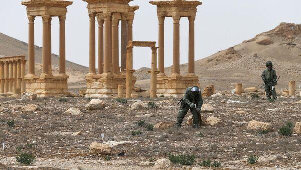 Experts from Russia's International Mine Action Center in Palmyra - Sputnik International