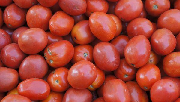 Tomatoes. - Sputnik International