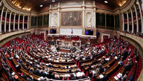 General view of the French National Assembly - Sputnik International