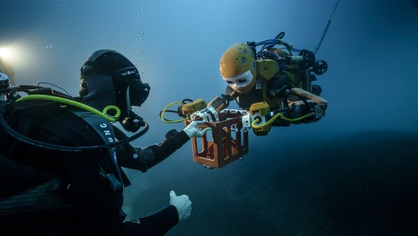 OceanOne - Sputnik International