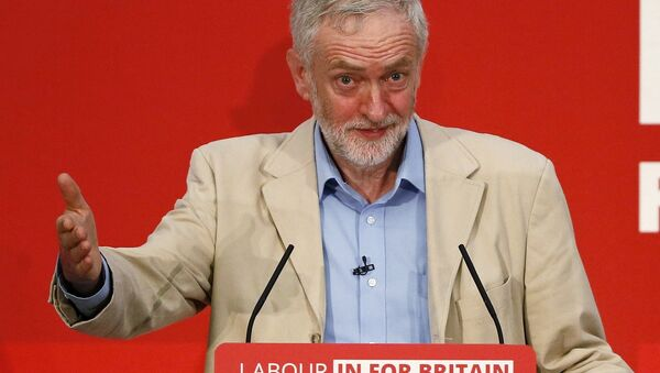 Britain's opposition Labour Party leader Jeremy Corbyn fields questions after giving a speech on Britain's membership of the European Union in London, Britain April 14, 2016. - Sputnik International
