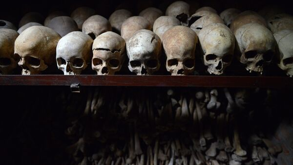 This file photo taken on April 04, 2014 shows human skulls preserved exhibited at the Genocide memorial in Nyamata, inside a Catholic church, where thousands were slaughtered during the 1994 genocide in Rwanda. - Sputnik International