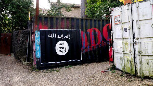 A Daesh flag - Sputnik International