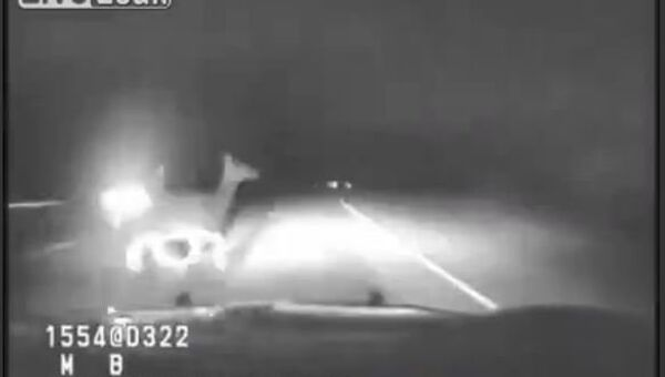Dashcam Shows Elk Hit By Montana Highway Patrol Car - Sputnik International