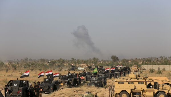 Iraqi military forces prepare for an offensive into Fallujah to retake the city from Islamic State militants in Iraq, Monday, May 30, 2016. - Sputnik International